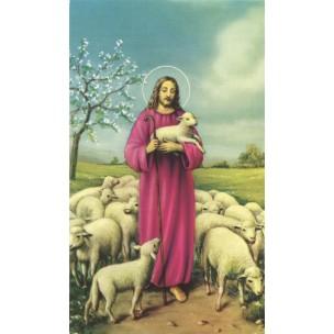 http://www.monticellis.com/3502-3810-thickbox/holy-card-of-jesus-the-shepherd-cm7x12-2-3-4x-4-3-4.jpg