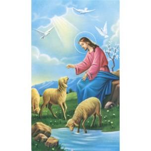 http://www.monticellis.com/3503-3811-thickbox/holy-card-of-jesus-the-shepherd-cm7x12-2-3-4x-4-3-4.jpg